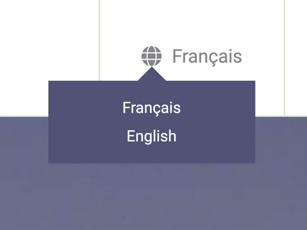multi languages support
